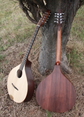 cittern and bouzouki